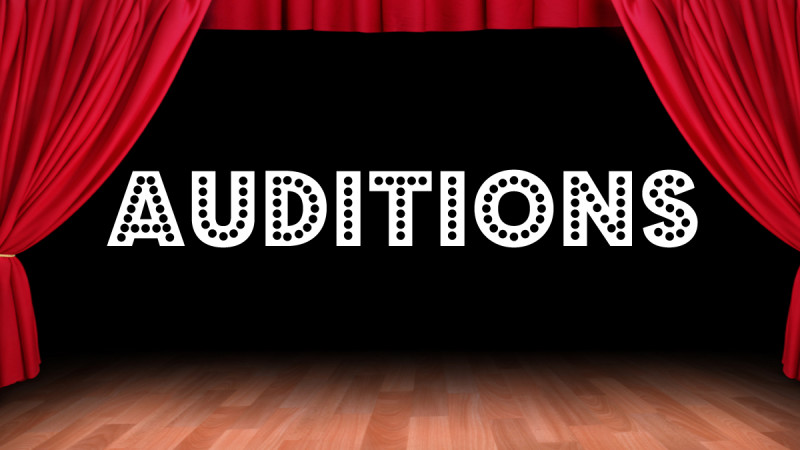 2018-2019 Prodigy and Ballet Company Auditions